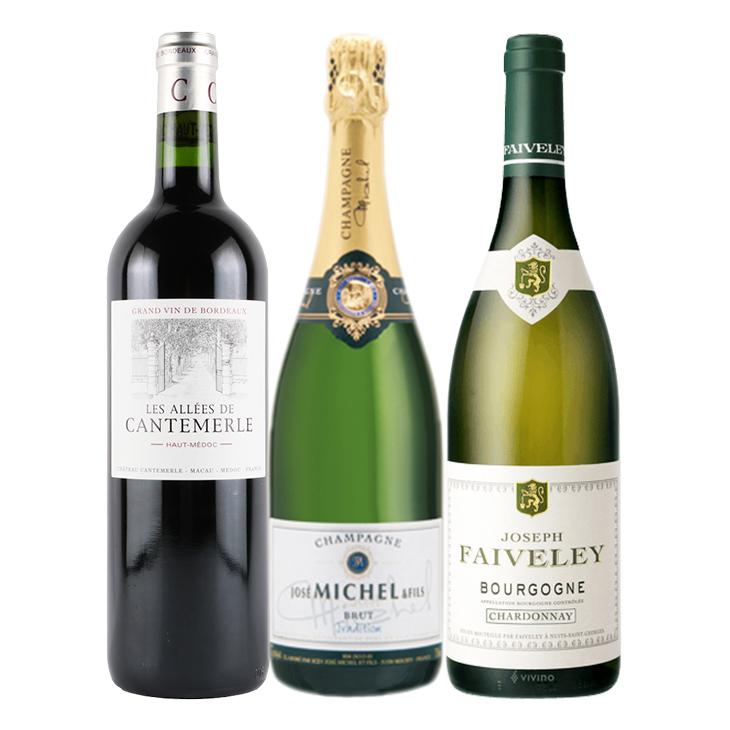 【新商品】自宅で楽しむ!ワインとフレンチコース(1名様分)のペアリングセット+富田葉子講師のZOOMセミナー付